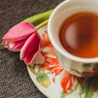 Тюльпан и чашка :: Алёнка Шапран
