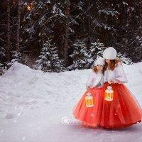 Зимняя сказка :: Юлия Захарова