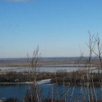 Дон и левый берег в феврале... :: Тамара (st.tamara)