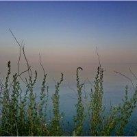 Крым.... Орджоникидзе :: Светлана