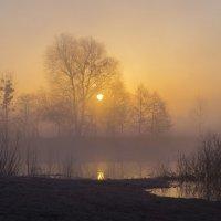 Туманное утро :: Сергей Корнев