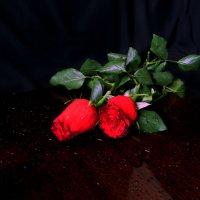 Любовь :: Наталья Джикидзе (Берёзина)