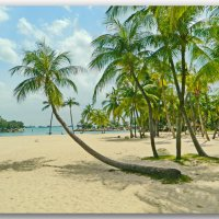 Пляж на о.Сентоса :: Андрей K.