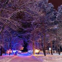 Вечерний парк :: Оксана Успенская