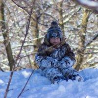 последние зимние деньки :: Александр Астапов