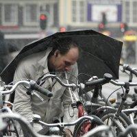 Вело-под-зонтом :: Sasha Berg