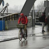 Дождь - не повод не ехать :: Sasha Berg