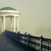 Туман над Волгой :: Николай Белавин