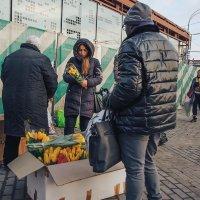 На улице весна, похоже... :: Ирина Данилова