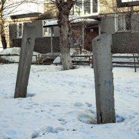 Бетонные деревья, панельные дома... :: Михаил Полыгалов