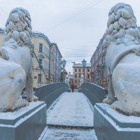Львиный мост. :: Сергей Сотников
