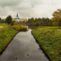 Пулковский парк. :: Валентина Потулова