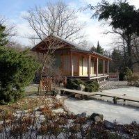 Весна в ботаническом саду :: Наталия Короткова
