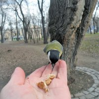 Вкуснота! :: Наталья