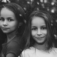 Сестры :: Андрей Дыдыкин