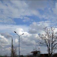 Вчерашнее небо над моей головой :: Нина Корешкова