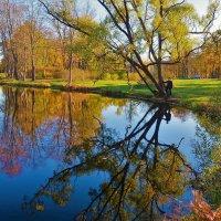 Заглянуть в отражение... :: Sergey Gordoff