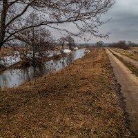 Два пути к Весне :: Андрей Дворников