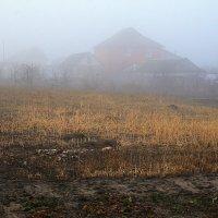 Туман. :: Казимир Буйвис