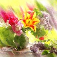 Весна пришла :: Татьяна Беляева