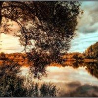 ...вечеров осенних тень :: Ирина Falcone