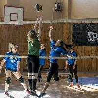 Волейбол :: Елена Баландина
