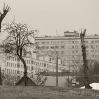 Коломенское, Москва :: Игорь Герман