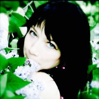 Весна :: Наталья Соколова
