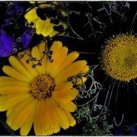 Букет цветов - в них встреча и разлука :: Нина Корешкова