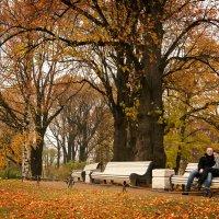 Осень в Таврическом саду :: Юлия Фотолюбитель