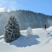 турист в горах :: Горный турист Иван Иванов