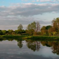 Узкая полоска леса на берегу реки :: Лара Симонова