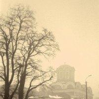 Про раннюю весну :: Сергей Тарабара