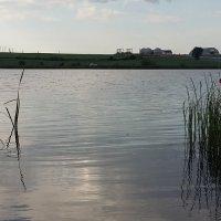 Озерцо... :: Светлана Яковинчик
