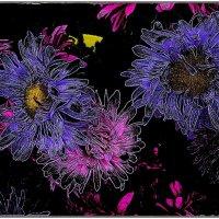 Астры - звёздные цветы :: Нина Корешкова