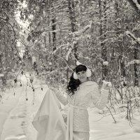 Зимние свадьбы :: Дмитрий Конев