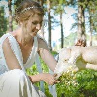 Свадебный позитив :: Олеся