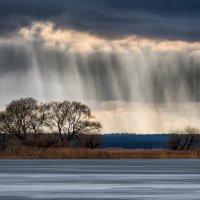 Оттенки весны :: Александр Попков