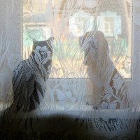 Кошка и гипосвый пес :: Елена Фалилеева-Диомидова
