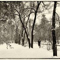 В парке :: Евгений Карский