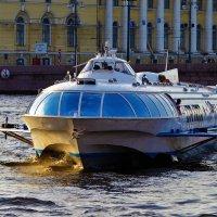 Примчался из Петергофа... :: Sergey Gordoff