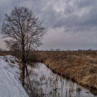 Такие разные берега :: Андрей Дворников