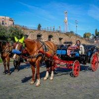Римское такси... :: Елена Митряйкина