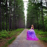 Сказочный лес :: Natalia Aleksandrova