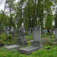 Жизнь  --------  это   миг ......... :: Андрей  Васильевич Коляскин