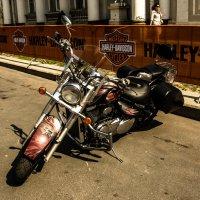 Harley Davidson :: Даниил pri (DAROF@P) pri
