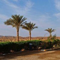 А дальше пустыня :: Alexander Andronik