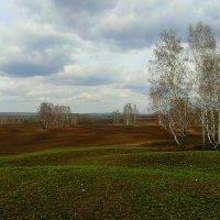 Весенний дождик. :: nadyasilyuk Вознюк