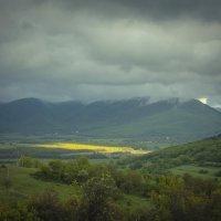 Солнечный луг :: Евгений Зинченко