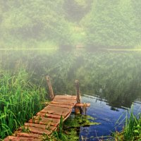 Утро у воды :: Мария Богуславская